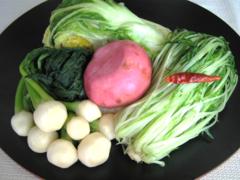 白菜 かぶ 水菜の塩漬